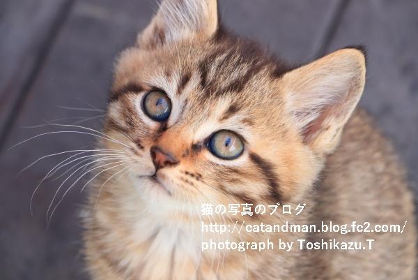 IMG_3296s.jpg