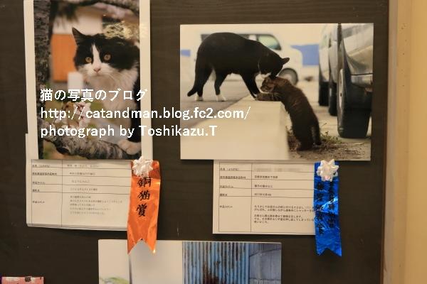 IMG_3511s.jpg
