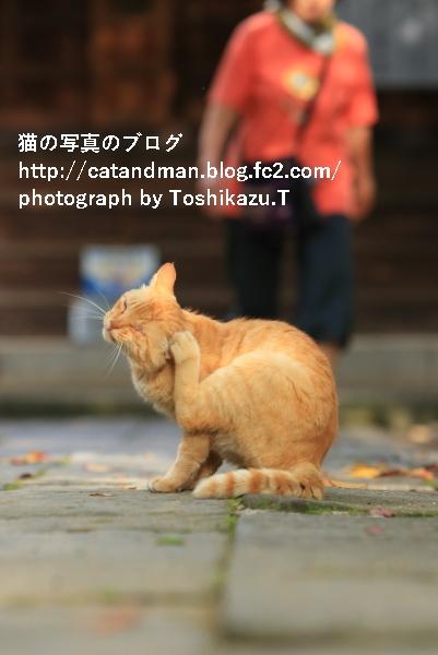 IMG_4546s.jpg