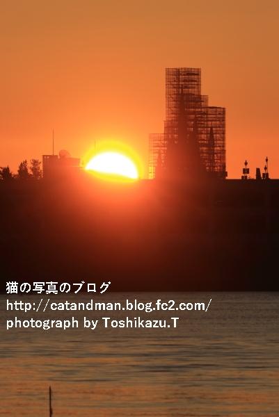 IMG_4770s.jpg