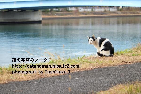 IMG_4819s.jpg