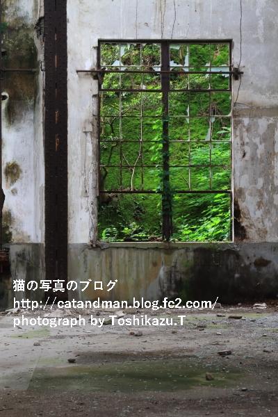 IMG_7644s.jpg