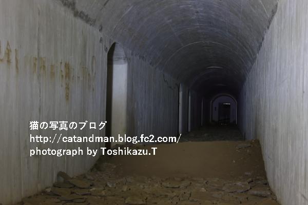 IMG_8322s.jpg