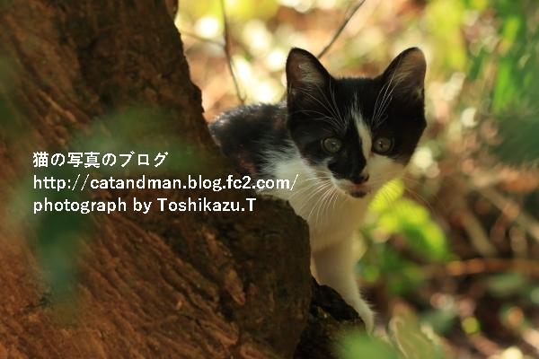 IMG_8622s.jpg