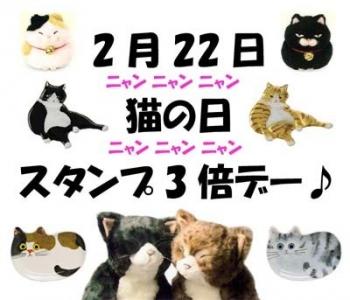 猫の日-1