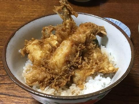 20191013 tsubaki-22