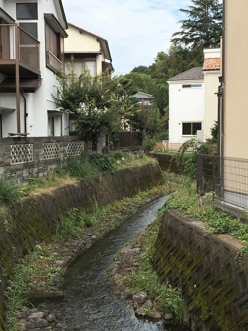 20191020 kokubunji-20