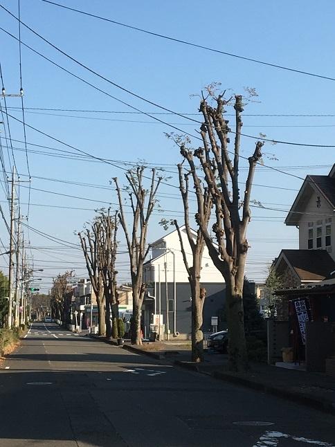 ichifuku22.jpg