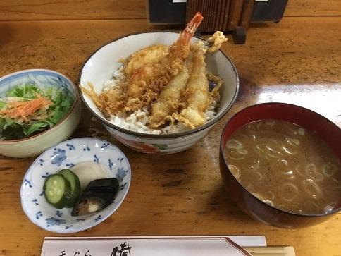 t-tsubaki19.jpg