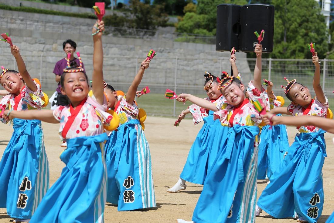 koiya191komomoyagura 8