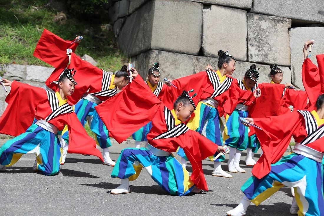 koiya191sakuragoku 3