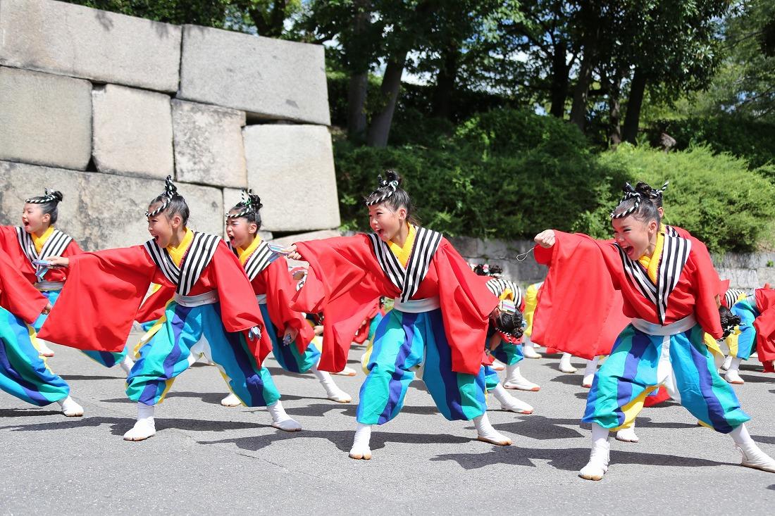 koiya191sakuragoku 7