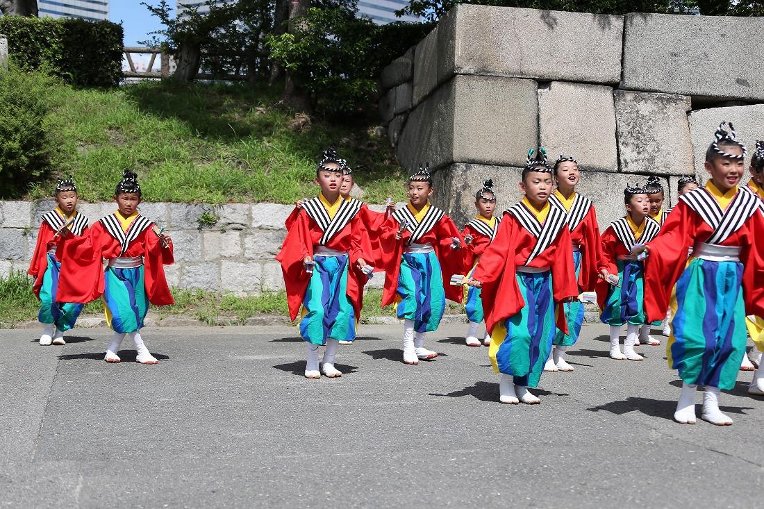 koiya191sakuragoku 8