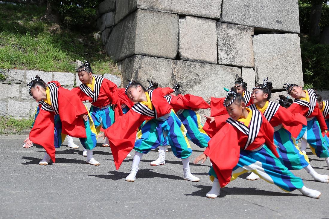 koiya191sakuragoku 49