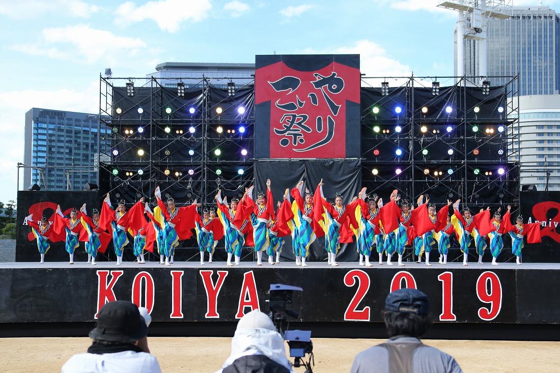 koiya191sakurasun 23