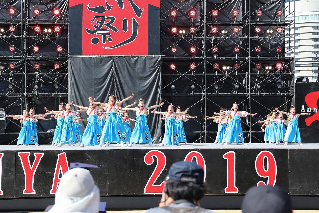koiya191komosun 5
