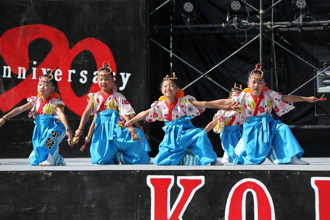 koiya191komosun 42