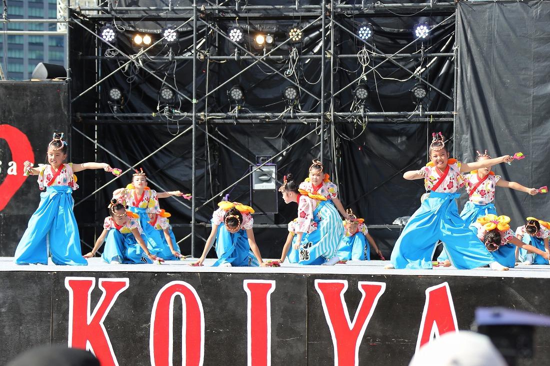 koiya191komosun 54