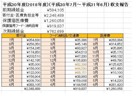 平成30年度収支報告(仮)