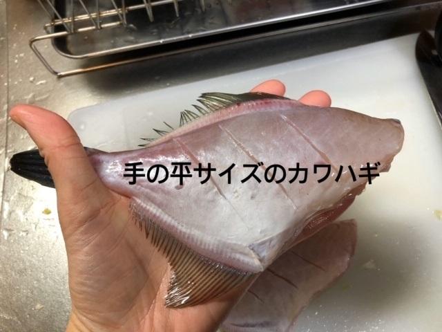 akamokukawa.jpg