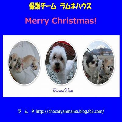 メリークリスマス2019 003