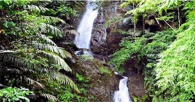 喜如嘉の「七滝」水しぶきに勢い2NGcpTbq