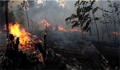 aaBrazil_Amazon_Fires_41156.jpg