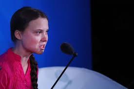 地球温暖化 グレタ・トゥンベリ 16歳 国連 トランプ大統領 花屋 花夢