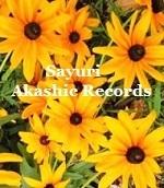 アカシックレコードリーディング アカシックレコードリーダーさゆり ひまわり サンフラワー