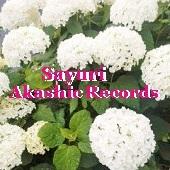 アカシックレコードリーディング アカシックレコードリーダーさゆり 白いあじさい