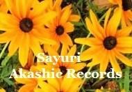 アカシックレコードリーディング アカシックレコードリーダーさゆり 黄色がキレイなひまわり