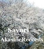 アカシックレコードリーダーさゆり 桜咲く アカシックレコードリーディング