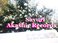 アカシックレコードリーディング アカシックレコードリーダーさゆり Airmail 白さざんかかしら
