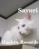 アカシックレコードリーディング アカシックレコードリーダーさゆり KJ