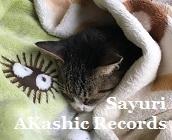 湯たんぽにゃんこ アカシックレコードリーダーさゆり アカシックレコードリーディング
