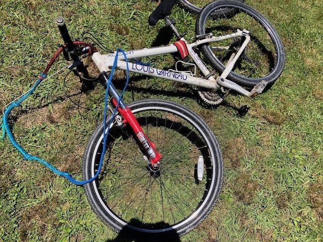 Bikejoring_mtb.jpeg