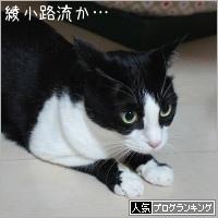dai20200120_banner.jpg