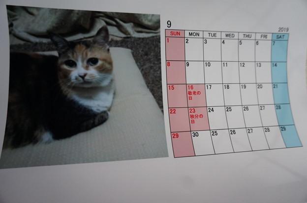2019.9のカレンダー