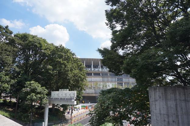 緑まみれの新国立競技場