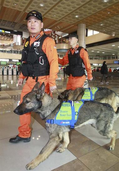 日本の外務副大臣が空港で出迎え、マスコミが執拗に報道した韓国救助隊