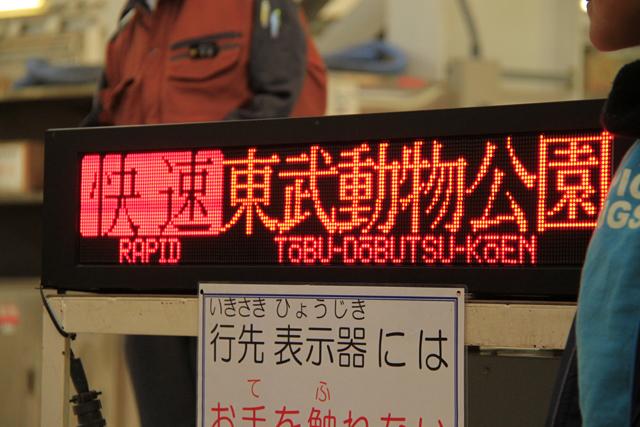 rapid_003.jpg