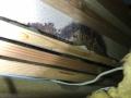 6棟物件ユニットバス漏水2度目カビ