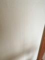 6棟物件F201和室ヤニ壁2