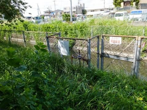 見沼代用水路西縁分水ゲート