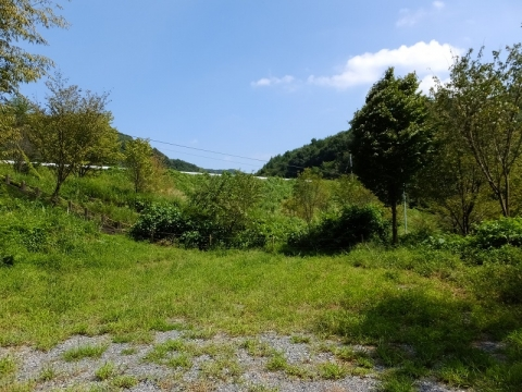 円良田ダム堰堤