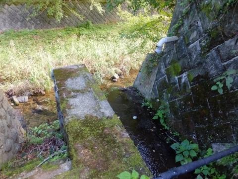 神奈川リハビリテーション病院の池から始まる小河川・玉川に合流