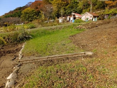 三井植物浄化施設の棚田