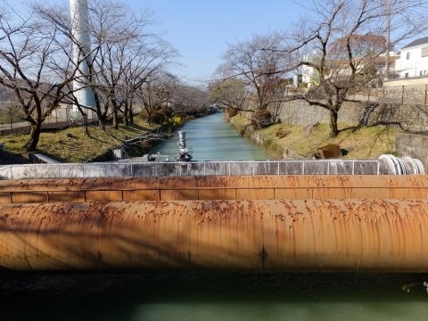 羽村橋上流で玉川上水を渡る水管橋