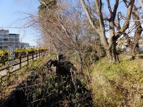 玉川上水・岩崎橋