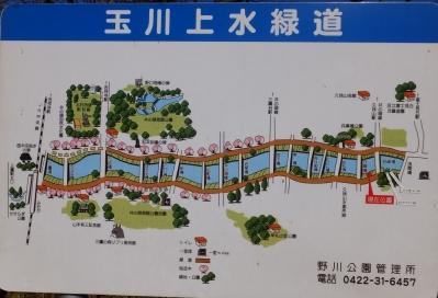 玉川上水緑道案内板・岩崎橋付近